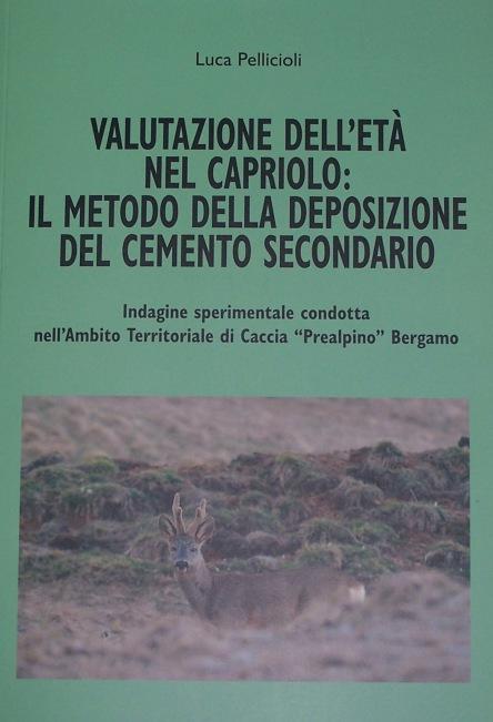 ValutCementoSecondario_Pellicioli