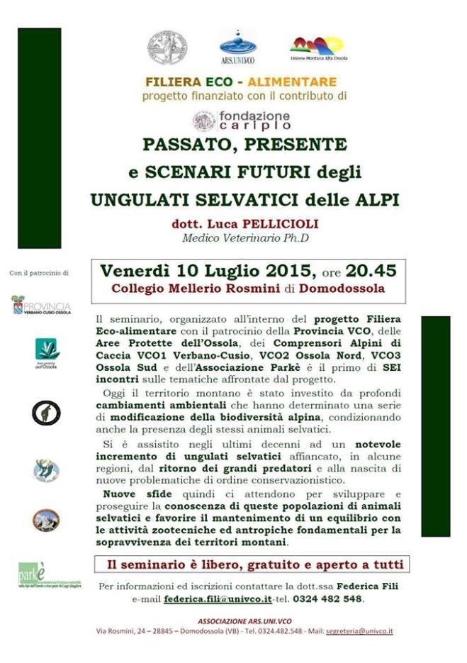 Locandina 10luglio2015