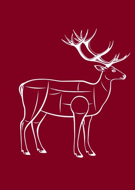 cervo carni.jpg