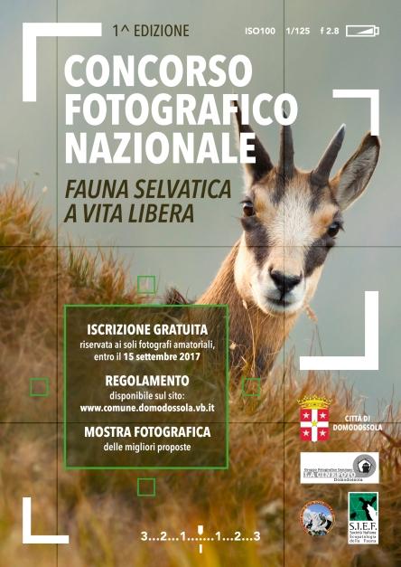 visual-concorso-cinefoto-fauna