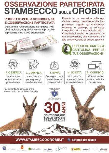LocandinaIbex