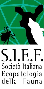 LOGO SIEF COMPLETO VERTICALE